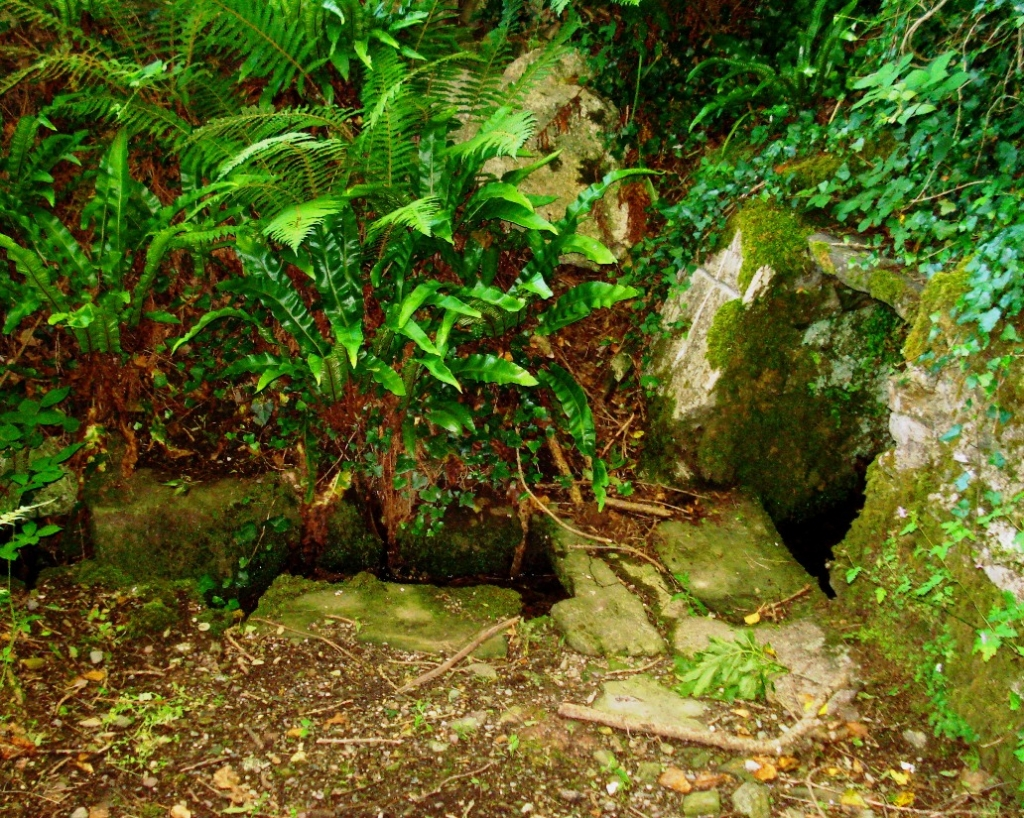Holy Well surrounding by a simple stone structure with a stone drain channel running off.