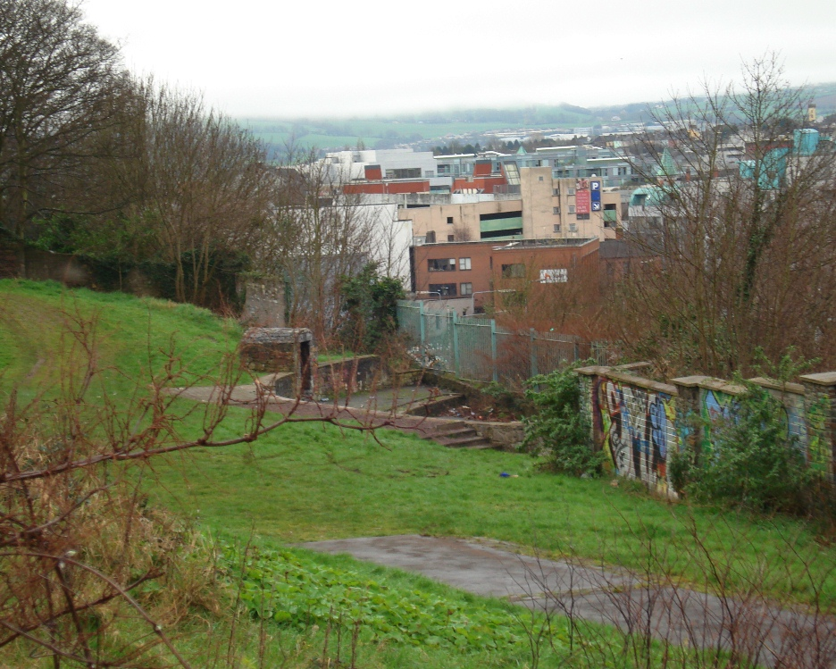 The view of the site in Feb 2012 from the laneway between Richmond Hill and Leitrim Street. 