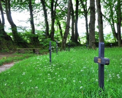 St Fanahan's Well, Mitchelstown, Cork: the Stations, a series of small crosses, are on the inner side of the oval path behind the well.
